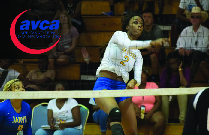 Photo for Lang Recognized by AVCA for Second Consecutive Year